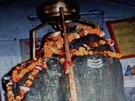 शिव-के-अर्धनारीश्वर-रूप-का-रहस्य-खोलता-शिव-शक्ति-का-संयुक्त-रूप।